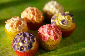 Bakels Steam Cup Cake Mix